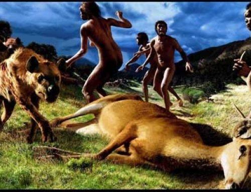 L'evolució de l´ésser humà. Estem preparats per córrer ?