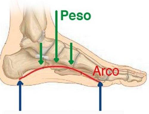El peu humà. Com està dissenyat